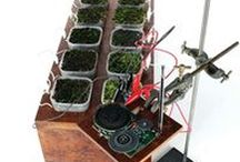 Moss FM, plant-powered radio / Moss FM is the world's first plant-powered radio, by Fabienne Felder in collaboration with Dr. Paolo Bombelli.