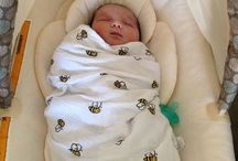 Future Baby Dressels / by Sarah Dressel