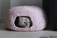 For our kitty cats