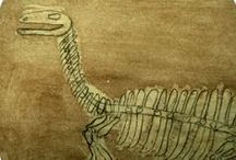 Science: Fossils / Fossil resources -- articles, lessons, ideas