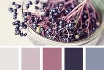 Colour / by Jackie Nicholls