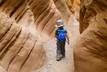 Utah, Goblin Valley & San Rafael Swell Vacation / Fun things to do while vacationing in Utah including Goblin Valley State Park, the San Rafael Swell, the Cleveland-Lloyd Dinosaur Quarry, scenic byways, slot canyon hiking, and pictographs. / by Natasha Maw