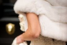 White Christmas / I can hear the jingle bells at The UpScale Tail, Dog Groomers, Naperville