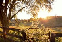 Country dream..... One day