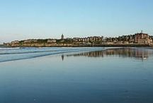 Beaches in Fife / A selection of beaches around Fife which you can visit while staying at Sandcastle Cottage, Crail http://www.2crail.com. Glorious sands at St Andrews, Tentsmuir, Kinshaldy and more.