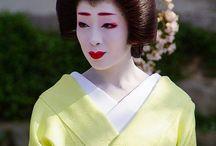 Geisha / Geiko in Pastel and Light