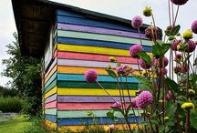 Garden & Allotment Sheds / The shed. We all need one!