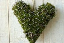 Valentine's in the Garden / Romance in the garden ❤️