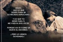 #MisCarteles / Junto una imagen con una frase y el resultado es un cartel para compartir!