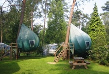 Extra Ordinary Tents