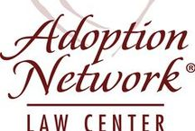 Adoption Network Law Center / The Adoption Network bridges the gap between the newborn child and parents that are willing and able to sustain the life the universe has given. Connect with us.