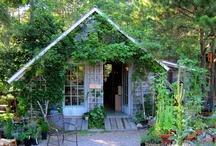 gardening / by Lois Diane