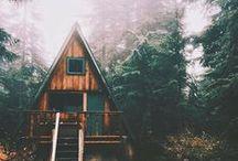 Cabin & Wood