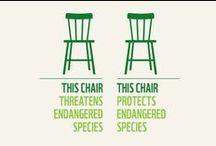 Eco & Wood