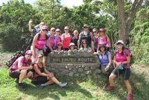 Gemma's Mt Kilimanjaro Blog