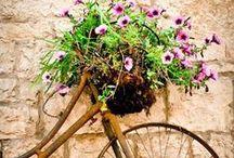 Fahrräder und Blumen