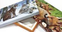 Stampa Fotografica / Stampa su carte fotografiche e telo cotone Canvass per interni, di altissima qualità. Possibilità di applicare le stampe su pannelli di spessori diversi, oppure su telaio in legno di qualsiasi dimensione. Siamo presenti dove è indispensabile l'eccellenza.