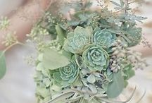 Celadon, Sage, Jade and Mint