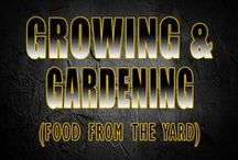 Gardening & Growing / Not everything we eat comes from Walmart. Learning how to be more self sufficient requires knowing how to garden and grow what you eat.