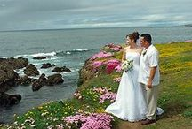 Wedding destination / Fort Bragg, CA is the perfect venue for your destination wedding.