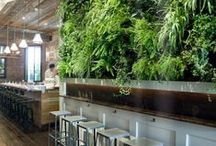 Green Walls / Vertical Gardens, Living Green Walls, Vegetated Walls, Living Walls, Vertical Greenery, Eco-walls, and more.