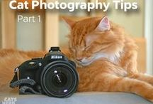 Photography / Photography tips and tricks.