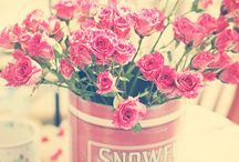 Fleurs & Cie