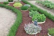 Puutarhaideoita / Vinkkejä ja ideoita puutarhasuunnitteluun