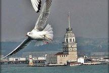İstanbul (Istanbul)
