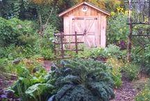 Ma petite cabane de jardin