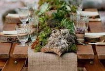 gartendesign / Kombinationen aus verschieden Pflanzen mit tollen Töpfen, Gefäße und Materialien.