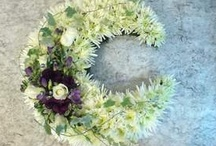 wreaths / by Moon Madness