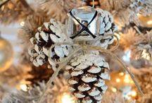 Christmas / by Amy Schepp