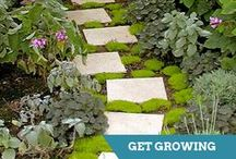 Landscape & Gardening Projects / Ideas and designs for your next landscaping project. / by HGTV How-To Library