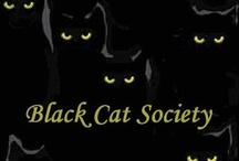 Black Cats Rule / by Debbie Heimann Motto
