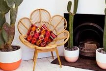 I dream of cacti / Modern southwest decor and accessories / by Melissa Galvin