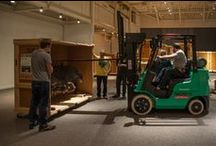 Behind the Scenes / An exclusive look into what it takes to create and assemble exhibits at the Florida Museum.