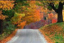vermont autumn / by Annie Lammers Farrell