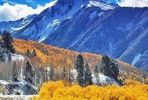 colorado autumn / by Annie Lammers Farrell
