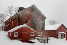 Barns / by Diana Fishman