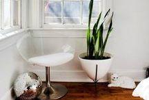 Indoor gardening / houseplants, succulents, indoor herb gardens, indoor plants decor, jungalow, indoor garden, houseplants that clean air