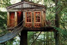 treehouse / cause who wouldn't want a treehouse?! / by Ally Grace Pope