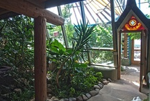 """Welcome to My Dream / Known as Biotecture in some circles, Earthships are an amazing """"off the grid"""" home and lifestyle."""