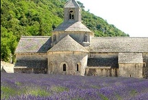 PROVENCE / FRANCE