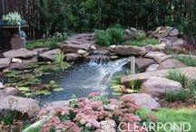 Water falls, Garden Ponds, Fish Ponds / Images of wonderful Garden Waterfalls, ponds and plants.