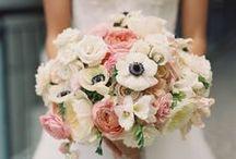 Stefania Poletti Wedding Planner / private events