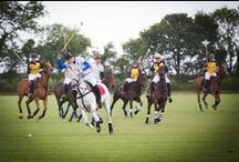 The Dalwhinnie Crook Charity Polo Match / On June 15 2013, Halcyon Gallery hosted the sixth annual Dalwhinnie Crook Charity Polo match in the glorious surroundings of Longdole Polo Club. Since its debut in 2007, The Dalwhinnie Crook Charity Polo Match has rapidly established itself as the most glamorous and sought after event of the social season. The match is a high octane, dynamic game played by world class players led by Their Royal Highnesses, The Duke of Cambridge and Prince Henry of Wales, playing for their chosen charities.