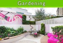 Gardens / Here we'll share latest gardening tips on backyard gardens, vegetable gardens, backyard garden designs, spring gardening, indoor garden, outdoor gardens and much more.