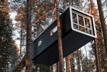 Tree House / Here you'll get latest tree house designs.
