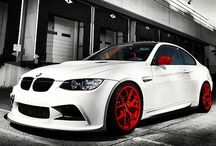 BMW Cars / by Kelly Dullanty